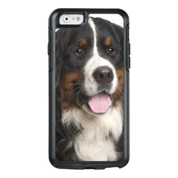 Bernese Mountain Dog (1 Year Old) Otterbox Iphone 6/6s Case by prophoto at Zazzle