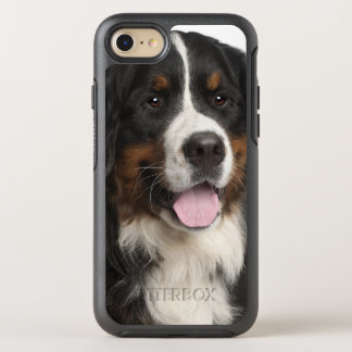 Bernese Mountain Dog (1 year old) OtterBox Symmetry iPhone 7 Case