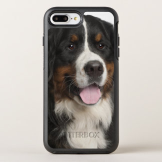 Bernese Mountain Dog (1 year old) OtterBox Symmetry iPhone 7 Plus Case