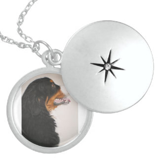 Bernese Mountain Dog 2 Sterling Silver Necklace