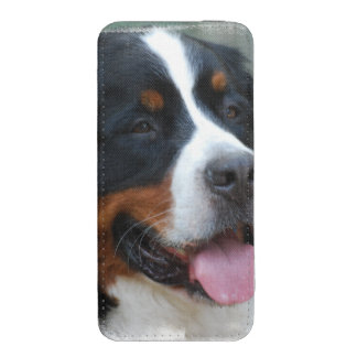 bernese-mountain-dog-7 iPhone 5 pouch