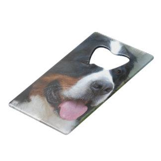 bernese-mountain-dog-7 credit card bottle opener