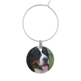 bernese-mountain-dog-7 wine glass charm