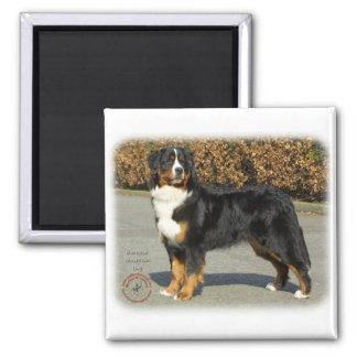 Bernese Mountain Dog 9T066D-133 Refrigerator Magnet
