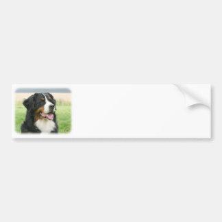 Bernese Mountain Dog 9Y066D-046 Car Bumper Sticker