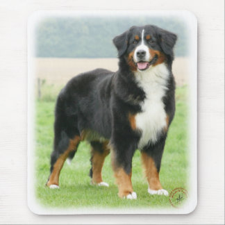 Bernese Mountain Dog 9Y066D-133 Mouse Pad