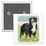 Bernese Mountain Dog 9Y066D-133 Pins