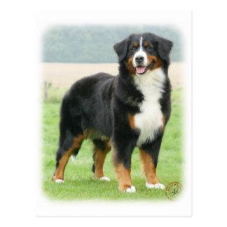 Bernese Mountain Dog 9Y066D-133 Postcard