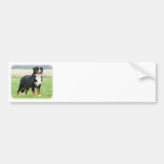 Bernese Mountain Dog 9Y066D-145 Car Bumper Sticker