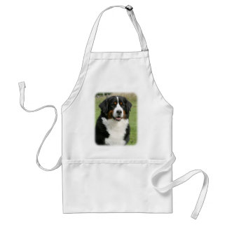 Bernese Mountain Dog 9Y236D-106 Adult Apron