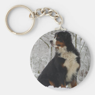 Bernese Mountain Dog Basic Round Button Keychain
