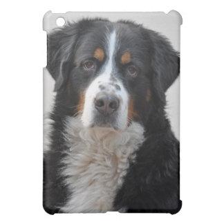 Bernese Mountain dog beautiful photo gift iPad Mini Case