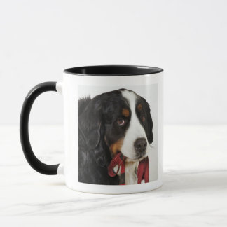 Bernese Mountain Dog (Berner Sennenhund) with Mug