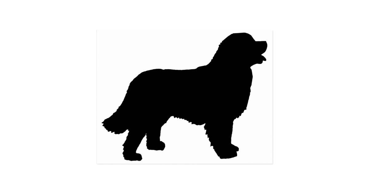 Bernese Mountain Dog Black Silhouette Postcard Zazzle Com