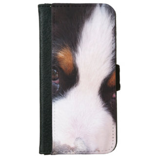 Bernese Mountain Dog Breed iPhone 6 Wallet Case