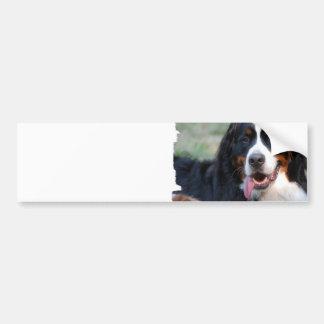 Bernese Mountain Dog  Bumper Sticker Car Bumper Sticker