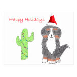 Bernese Mountain Dog Cactus Christmas Postcard