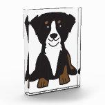 Bernese Mountain Dog Cartoon Award