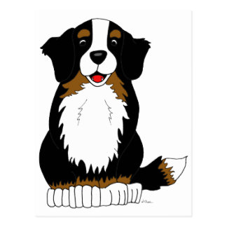 Bernese Mountain Dog Cartoon Postcard