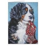Bernese Mountain Dog Christmas Card
