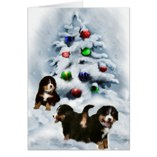 Bernese Mountain Dog Christmas Gifts Card