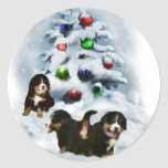 Bernese Mountain Dog Christmas Gifts Classic Round Sticker