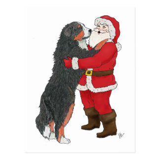 Bernese Mountain Dog Christmas Greeting Post Cards