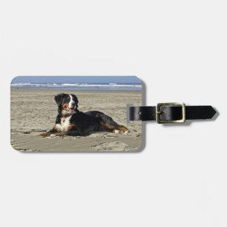 Bernese Mountain dog custom name luggage tag