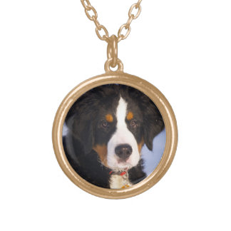 Bernese Mountain Dog - Cute Puppy Photo Gold Plated Necklace
