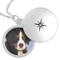 Bernese Mountain Dog - Cute Puppy Photo Silver Plated Necklace