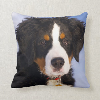 Bernese Mountain Dog - Cute Puppy Photo Throw Pillow