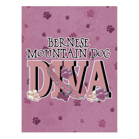 Bernese Mountain Dog DIVA Postcard