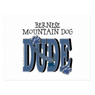 Bernese Mountain Dog DUDE Postcard
