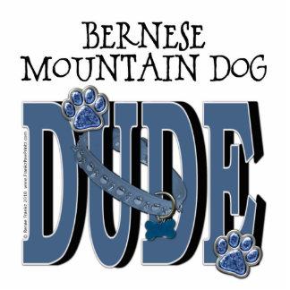 Bernese Mountain Dog DUDE Standing Photo Sculpture