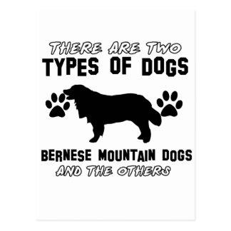 bernese mountain dog gift items postcard