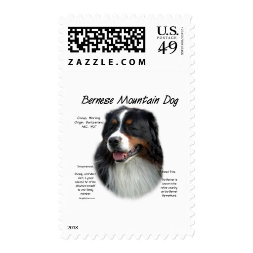 Bernese Mountain Dog History Design Stamps