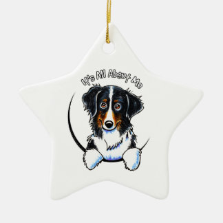 Bernese Mountain Dog IAAM Ceramic Ornament