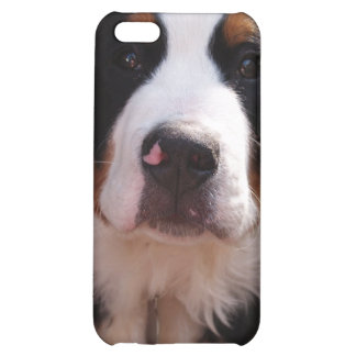Bernese Mountain Dog iPhone Case Case For iPhone 5C