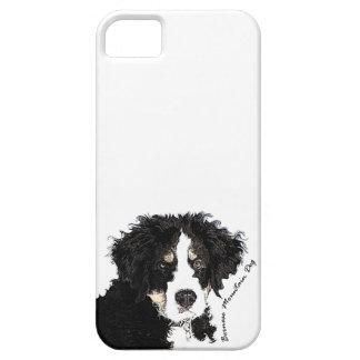 Bernese Mountain Dog iPhone SE/5/5s Case