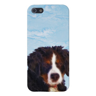 Bernese Mountain Dog iPhone SE/5/5s Cover