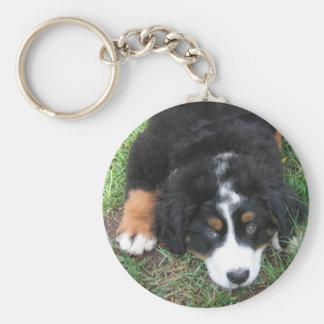 Bernese Mountain Dog Keychain