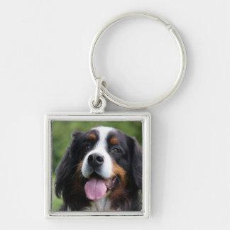 Bernese Mountain dog keychain, gift idea Keychain