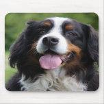 Bernese Mountain dog mousepad, gift idea
