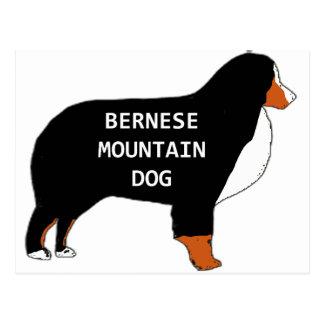 Bernese Mountain Dog name silhouette rust Postcard