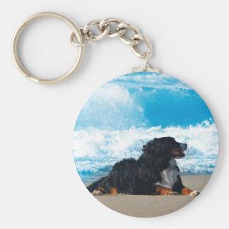Bernese Mountain Dog on Beach Keychain