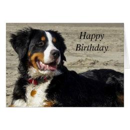 Bernese birthday cards greeting photo cards zazzle bernese mountain dog photo custom birthday card bookmarktalkfo Gallery