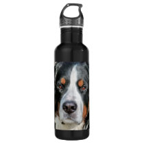 Bernese Mountain Dog Photo Image Stainless Steel Water Bottle