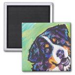 Bernese Mountain Dog Pop Art Magnet Fridge Magnet