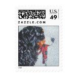 Bernese Mountain Dog Postage Stamp
