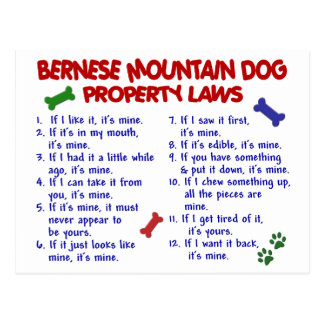 BERNESE MOUNTAIN DOG Property Laws 2 Postcards